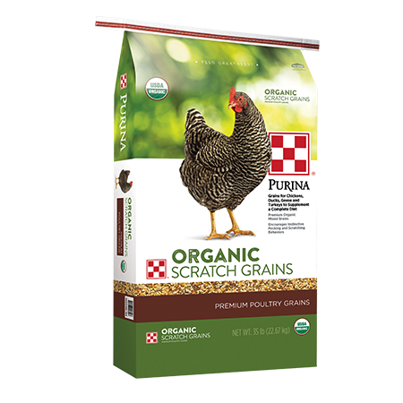 Purina Organic Scratch Grains. Poultry feed bag with grey chicken.