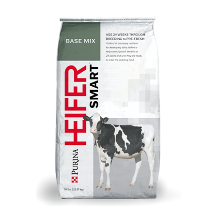 Purina Heifersmart Base Mix. White feed bag with red lettering. Features a black and white calf.