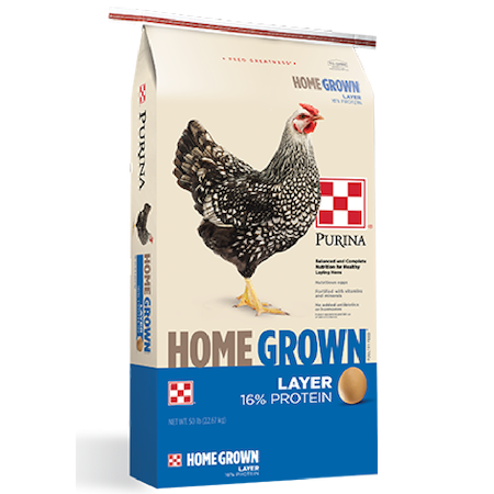 Purina Home Grown 16% Layer Crumbles. Blue and white poultry feed bag. Features a single grey chicken.