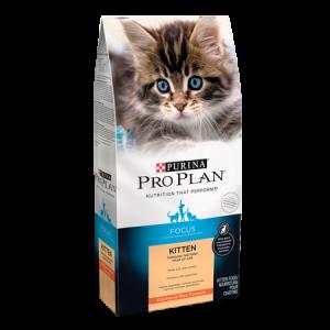 Pro Plan Focus Kitten