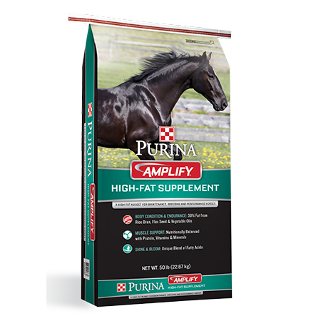 Purina Amplify High-Fat Horse Supplement. Black and teal feed bag, black horse.