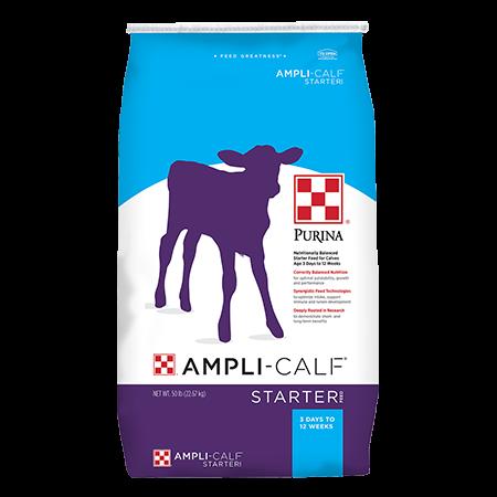 Purina Ampli-Calf Starter 22. Blue and purple feed bag.