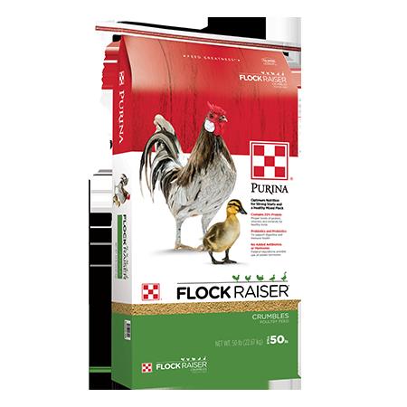 Purina Flock Raiser Medicated Pellets