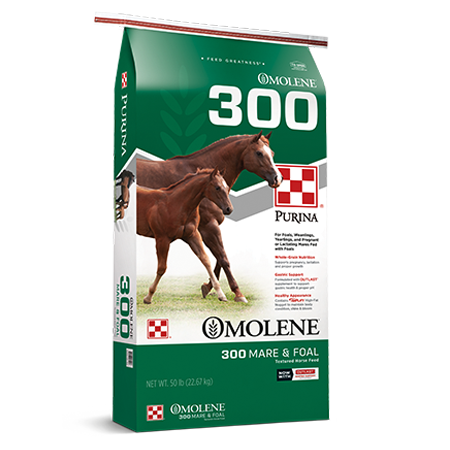 Purina Omolene 300 Growth Mare & Foal. Green horse feed bag with two brown horses.