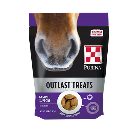 Purina Outlast Horse Treats. Purple resealable bag with horse nose.