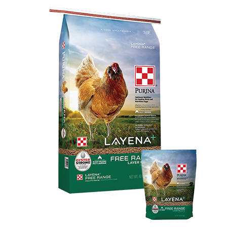 Purina Layena+ Free Range. Large and small poultry feed bags with brown chicken.