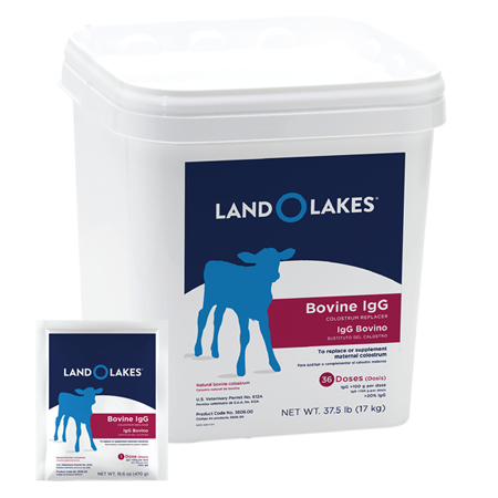 Land O Lakes Colostrum Replacement