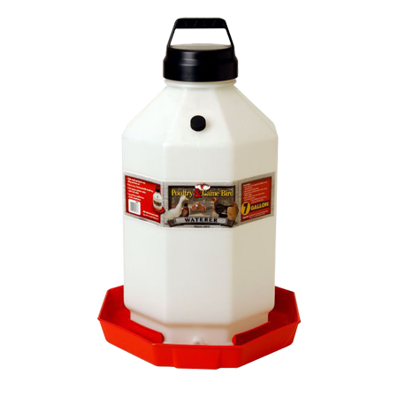 Little Giant 7 Gallon Plastic Poultry Waterer