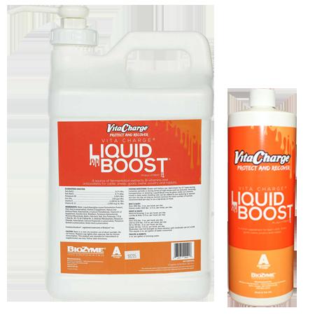 Vita Charge Liquid Boost