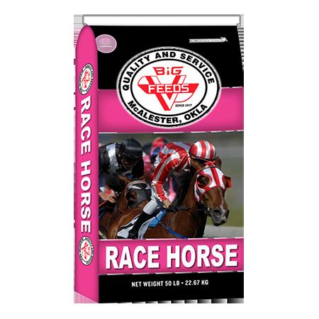 Big V Heritage Race Horse (14-10)