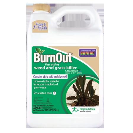 Bonide BurnOut Conc 32-oz Container