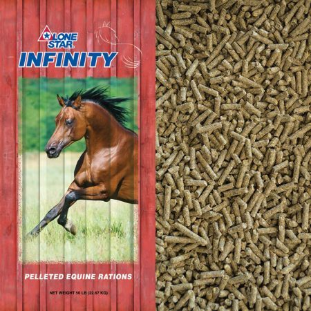 Red feed bag. Brown horse running. Pelleted feed for senior equine.