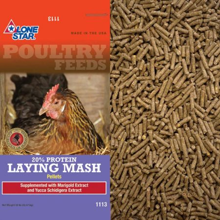 Pelleted laying Mash for chickens. Lone Star Poultry Mash 1113