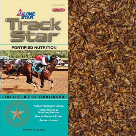 Tan and teal feed bag. Feed for race horses.