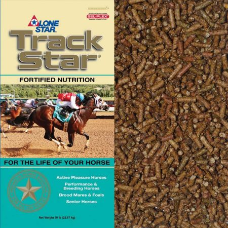Teal and tan horse feed bag. Food for senior equine. Track Star Senior 1094