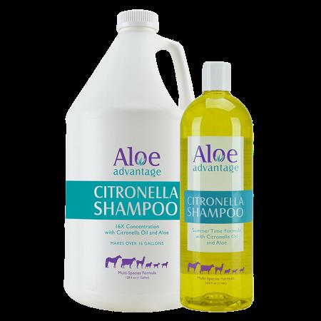 Aloe Advantage Citronella Shampoo. Gallon and 32-oz size pictured.