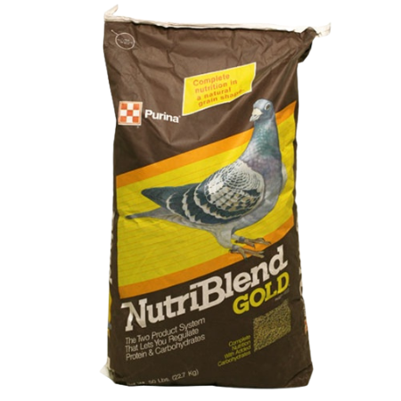 Purina Nutriblend Gold High Protein Pigeon Feed. Brown and yellow feed bag. Larger grey pigeon.